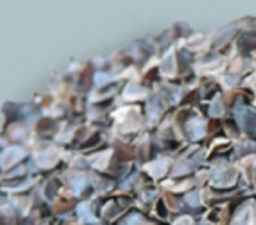 rembourrage sarrazin conforauly